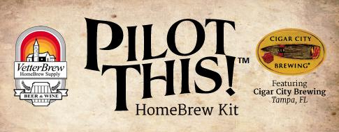 Pilot This Logo