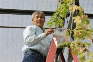 Environmental horticulturist Zhanao Deng.